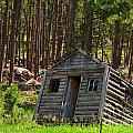 Sinking Cabin by John Malone