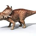 Sinoceratops Male Dinosaur by Jose Antonio Penas/science Photo Library