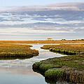 Sippewissett Marsh by Jennifer Kano