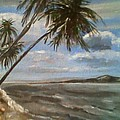 Siquijor Island by Richard John Holden RA