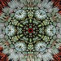 Sister Cactus Mandala by Richard Copeland