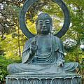 Sitting Bronze Buddha At San Francisco Japanese Garden by David Gn