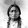 Sitting Bull by Bill Cannon