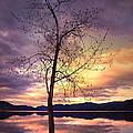 Skaha Lake On A Saturday Morning by Tara Turner