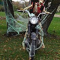 Skeleton Biker On Motorcycle  by Sara  Raber