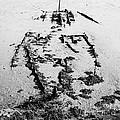 Skeleton Boat by Svetlana Sewell
