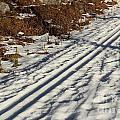 Ski Track In Sunlight In Spring by Kerstin Ivarsson