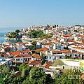 Skiathos Harbour In Greece by David Fowler