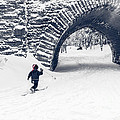 Skiing In Acadia National Park by Edward Fielding