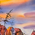 Skinny Trees Windy Day by Teresa Ascone