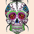 Skull 11 by Mark Ashkenazi
