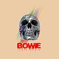 Skull Bowie  by Mark Ashkenazi