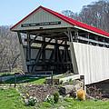 Skull Fork Covered Bridge by Guy Whiteley