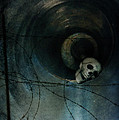 Skull In Drainpipe by Jill Battaglia