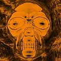 Skull In Negative Orange by Rob Hans