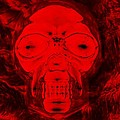 Skull In Negative Red by Rob Hans