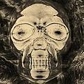 Skull In Negative Sepia by Rob Hans