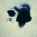 Skull by Nicklas Gustafsson