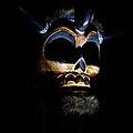 Skull by Tera Michaels