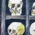 Skulls In The Crypt by Fabrizio Cassetta