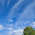 Sky Blue Summer Art by Ann Horn