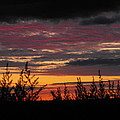 Sky Colours by Penny Homontowski