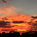Sky Flames by Catie Canetti