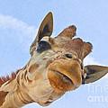 Sky High Giraffe by Robert Frederick