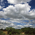 Sky Land Water by Marcia Mauskopf
