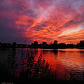 Sky On Fire 2 by Mikki Cucuzzo