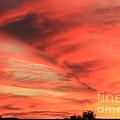 Sky On Fire by Carol Komassa
