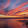 Sky On Fire by Jane Luxton