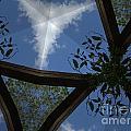 Sky Palace by Donna Spencer