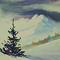 Sky Shadows And Spruce by Teresa Ascone