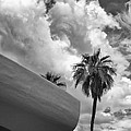 Sky-ward Palm Springs by William Dey