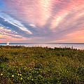 Sky Waves by Lynn Bauer