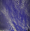 Sky Winds by Mick Anderson