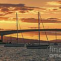 Skye Bridge Sunset by Chris Thaxter