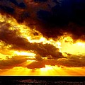 Skygold by Amar Sheow
