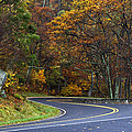 Skyline Drive by Guy Shultz