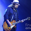 Skynyrd-gary-7399 by Gary Gingrich Galleries