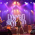 Skynyrd-group-7820 by Gary Gingrich Galleries