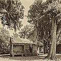 Slave Quarters Sepia by Steve Harrington