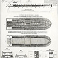 Slave Ship Middle Passage Stowage Diagram  1788 by Daniel Hagerman