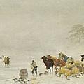 Sledges On The Ice by Arthur Nikutowski