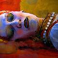 Sleeping Beauty In Waiting by David Lee Thompson