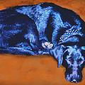 Sleeping Blue Dog Labrador Retriever by Ann Powell