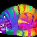 Sleepy Colorful Cat by Nick Gustafson