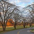 Sloan Park Sunset by Adam Jewell