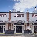 Sloppy Joe's by Tracy Knauer
